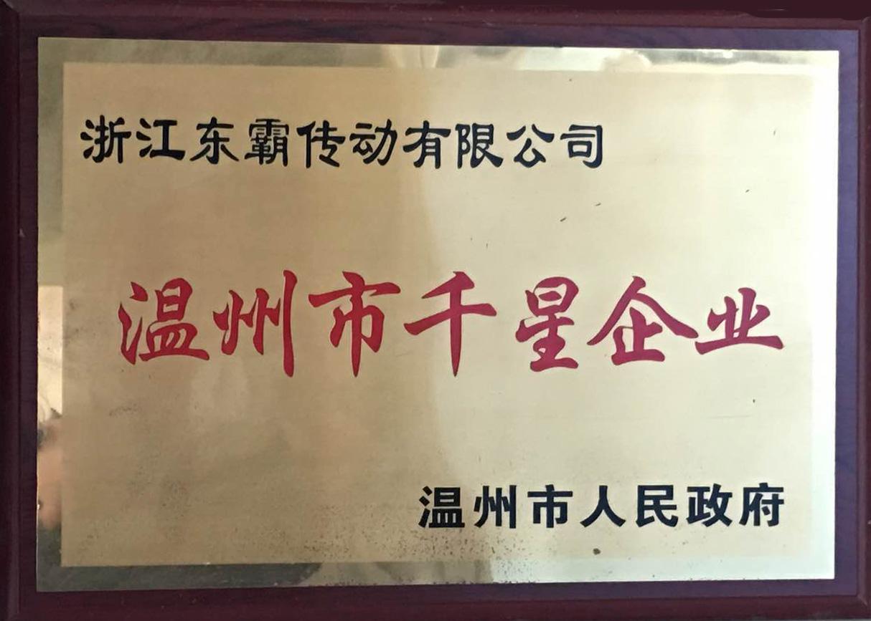 温州市千星企业